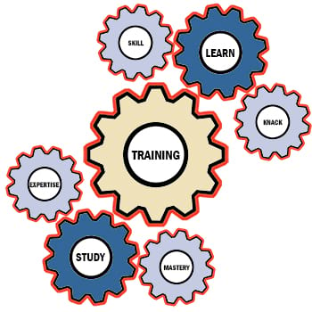 Licensed VNA Training