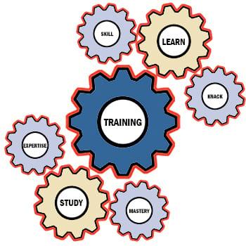 Licensed Pallet Stacker Training